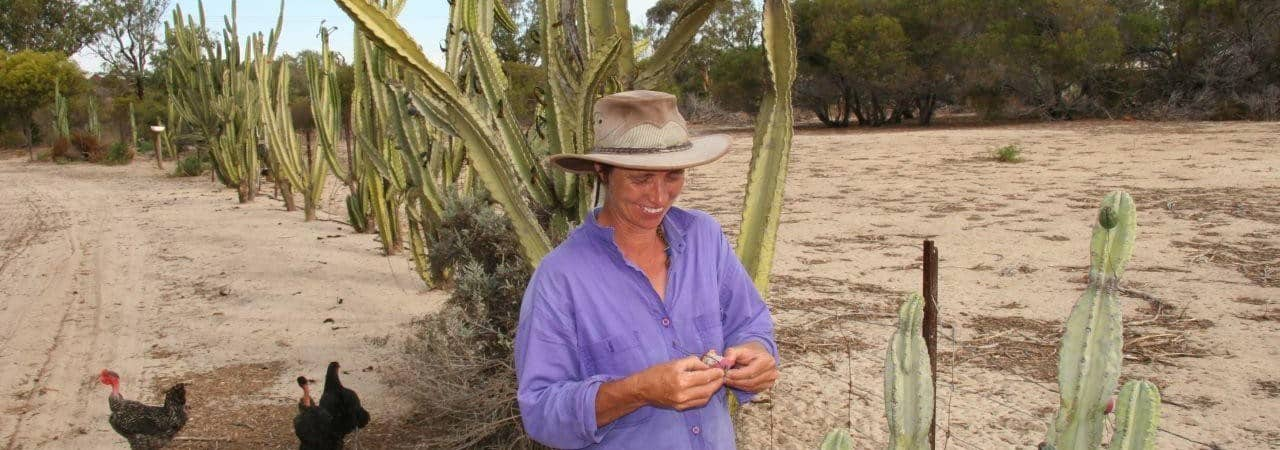 Julie Firth, Founding member Drylands Foundation with Apple Cactii at the Drylands Permaculture Farm
