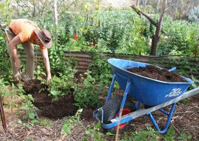 Heirloom Seed Gardens